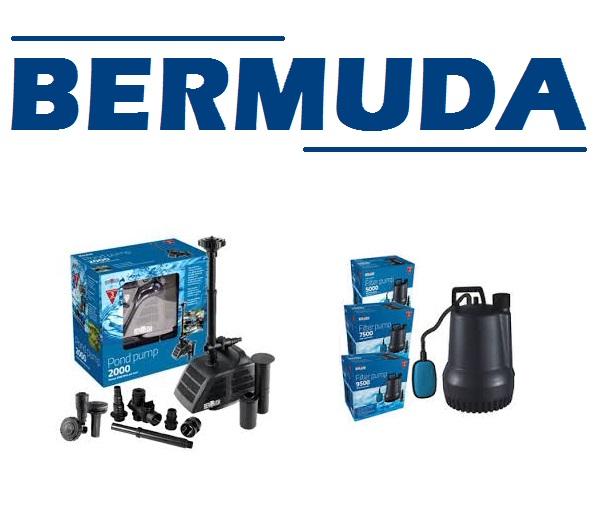 Bermuda Shop