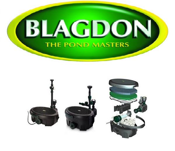 Blagdon Shop