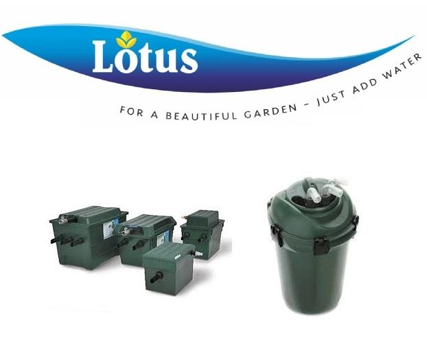 Lotus Shop