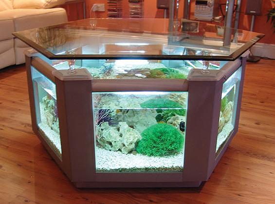 Aquarium coffee table uk argos