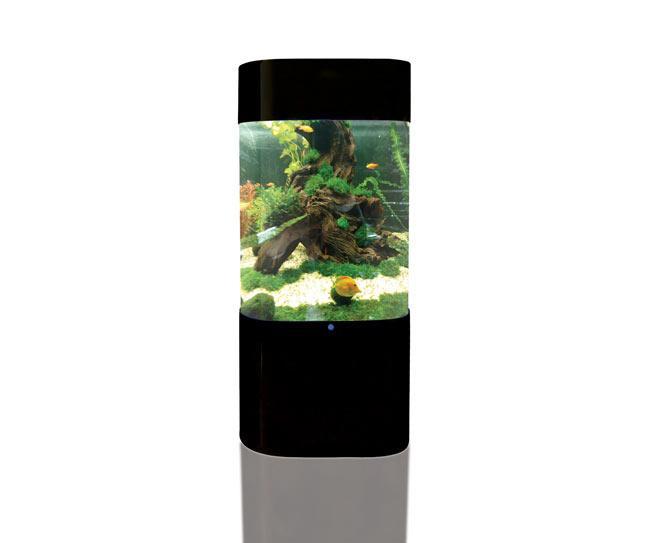 Gallery for modern fish tanks for Modern fish tanks