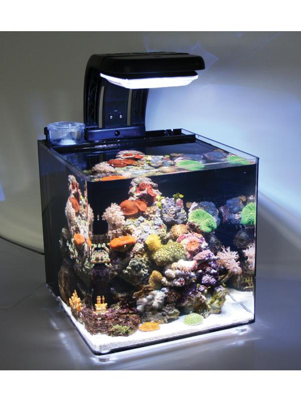 Tmc microhabitat 30 nano aquarium for Micro fish tank