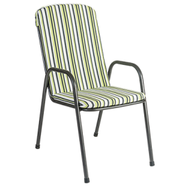With Lime Green Stripe Cushion