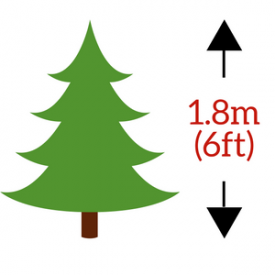 in 1.8m (180cm / 6ft) Height Size