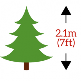 in 2.1m (210cm / 7ft) Height Size