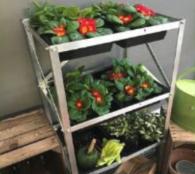 with FREE 3-Tier Seed Tray Frame