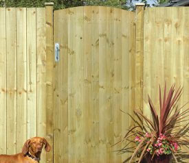 with Tongue And Groove 3ft x 6ft Gate