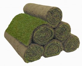 as 40 Rolls of Classic Turf