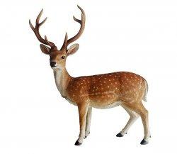 Deer and Reindeer Home and Outdoor Garden Ornaments