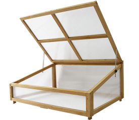 with Small Natural Cold Frame