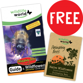 with FREE Bee Guide & Wildflower Seed Pack
