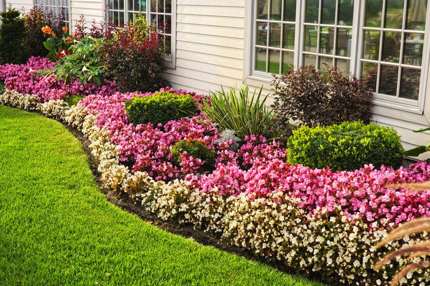A flower border in a landscape garden.