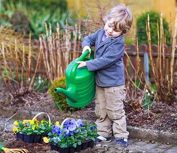 Child watering plants in the garden