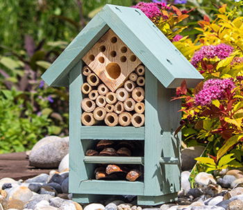 Bee and Bug hotel in the garden