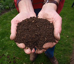 man holding moist compost
