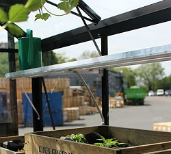 Shelving in a Greenhouse