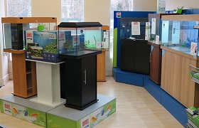 Many aquariums on display inside our aquatics superstore
