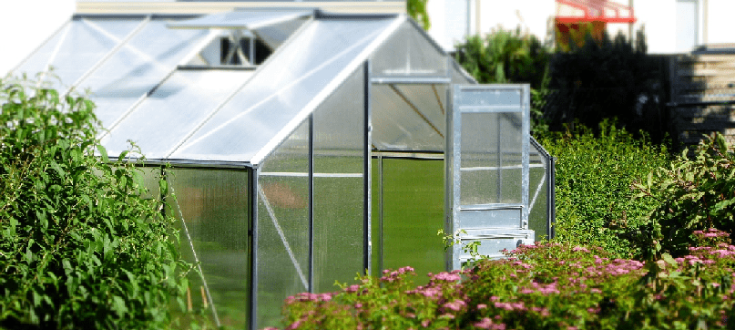 A greenhouse surrounded by plants and flowers.