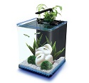 Aquarium with a lighting system